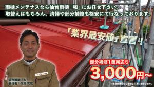 仙台雨樋「和」のフロント画像